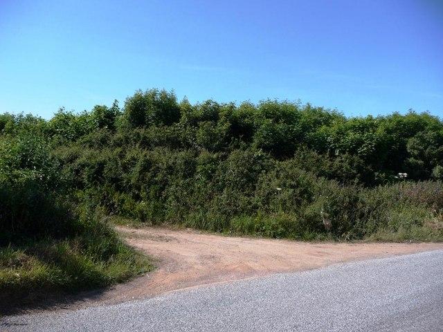Footpath emerging onto B3395