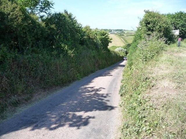 One of Devon's very narrow back lanes