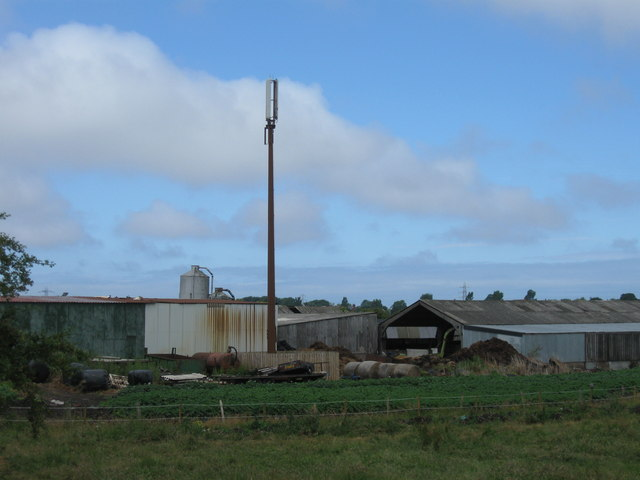 Mast at Springfield Farm