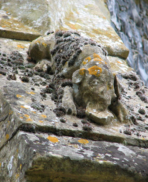 St Mary's church in Ufford - stone dog on porch