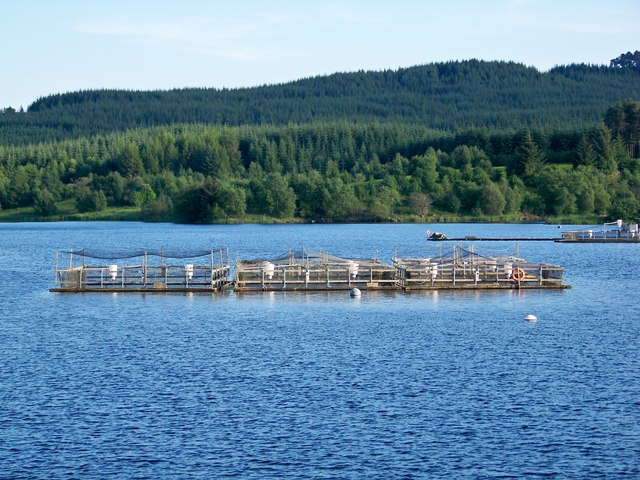 Fish Farm On Kendoon Loch