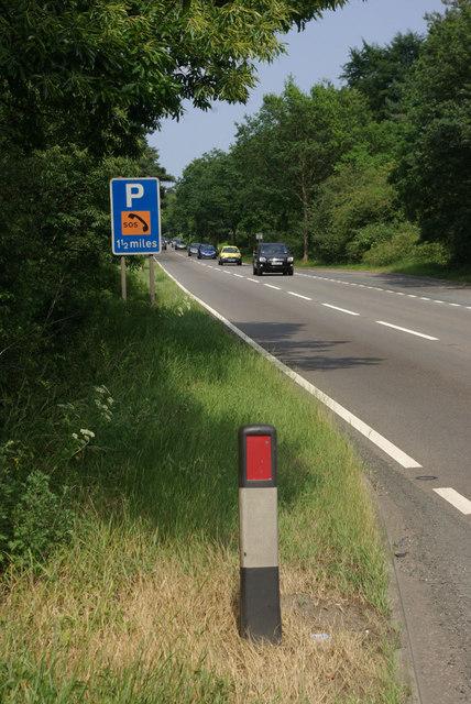 A11 through Mildenhall Woods