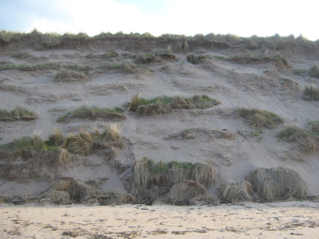 Eroded sand dunes at Cheswick Beach