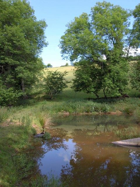 Pond below Week Farm