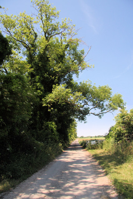 Track to West Fen
