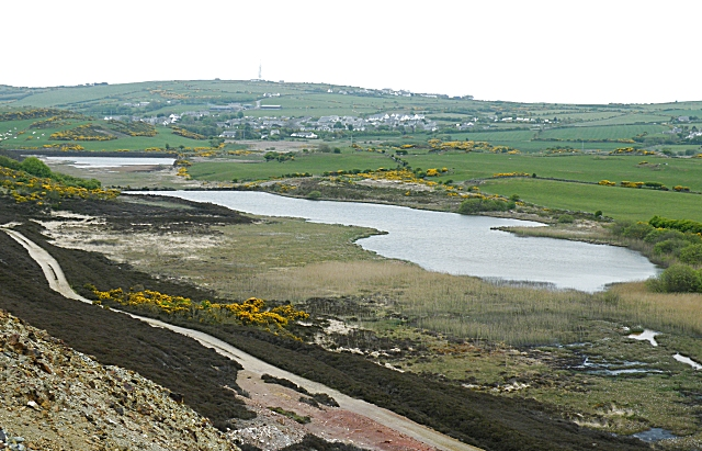 Ponds below Mynydd Parys