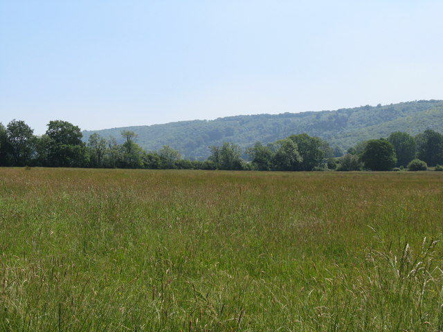 View south across hay field near Upper Norwood