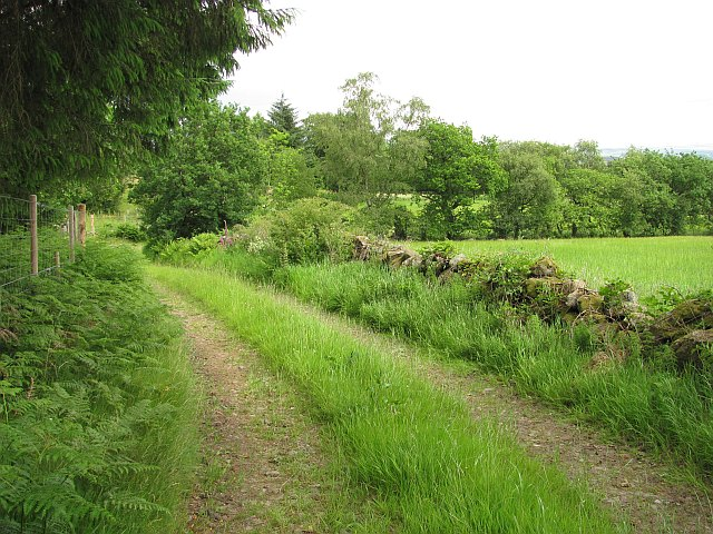 Farm track, Torwood Head