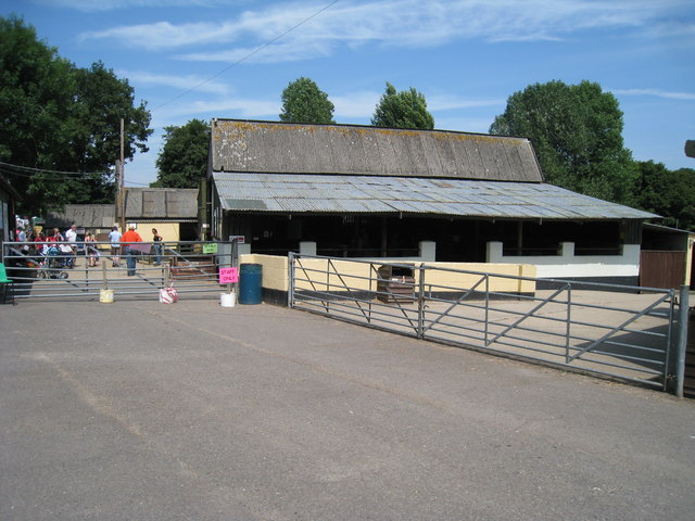 Petting Barn at Rare Breeds Centre