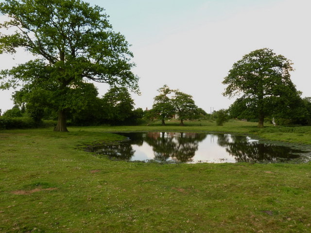 The far end of the pool at Blymhill Common