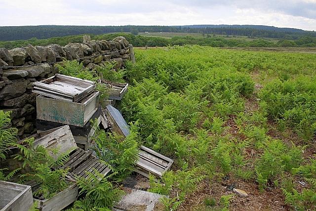 Ruined Beehives, Jugger Howe Moor