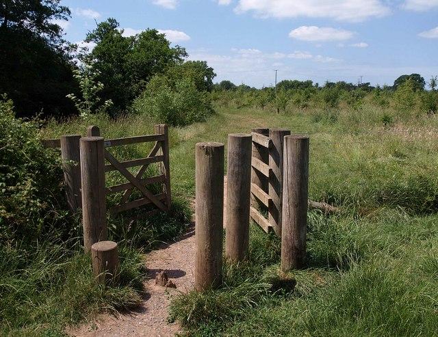 Gate, Netherclay Community Woodland