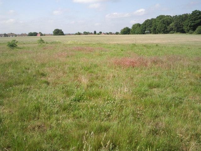 Clam Field, Bostall Heath