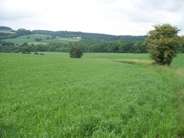 Bridleway to Blockley