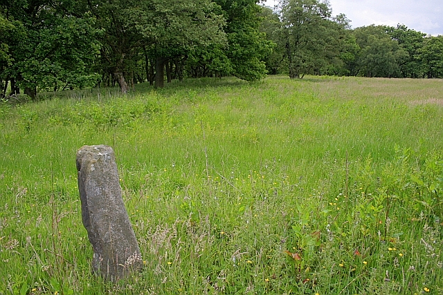 Stone Post, Helwath Wood