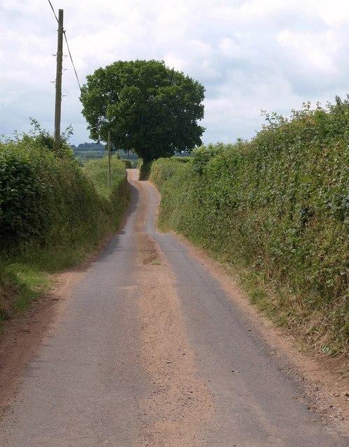 Lane to Ivy Cross