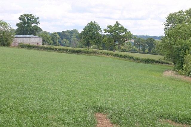 Field and barn near Kittisford