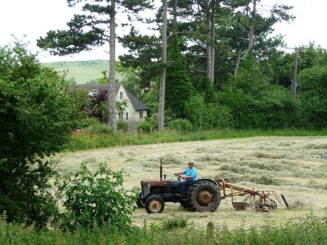 Haymaking near Gotherington Station