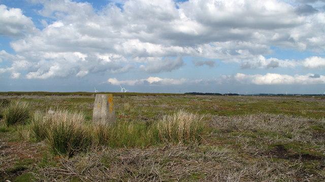 Wolsingham North Moor