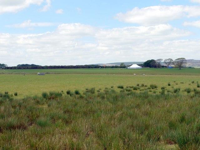 Fields north of Coat Yards Farm