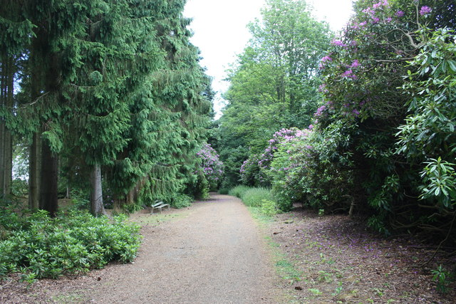 Track through the Belmont Castle grounds