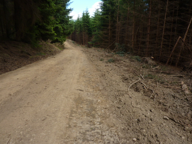 Widened forest track in Clashindarroch Forest