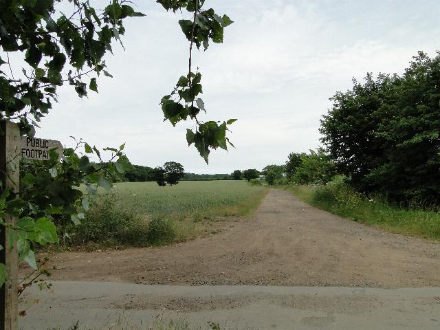 Footpath to Furze Grove