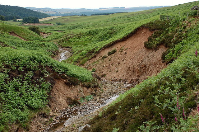 Bank erosion by the Long Philip Burn