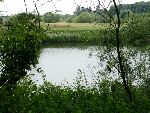 River Tees between the trees