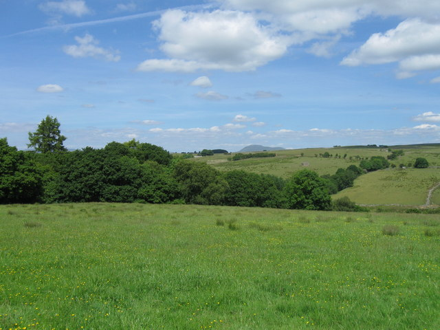 View from Botton Road, Thrushgill