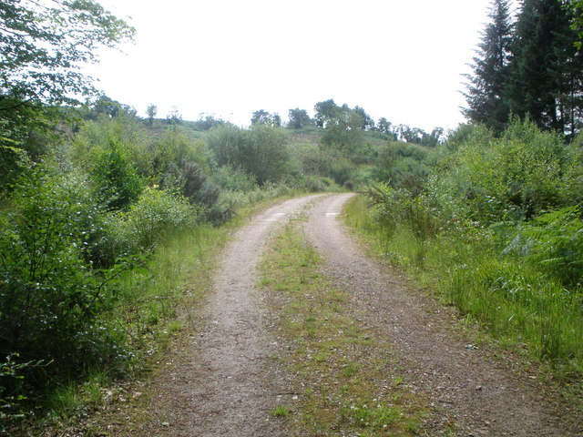 Estate track to Lower Auchalick