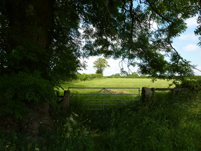Gate and stile on a path to Tissington