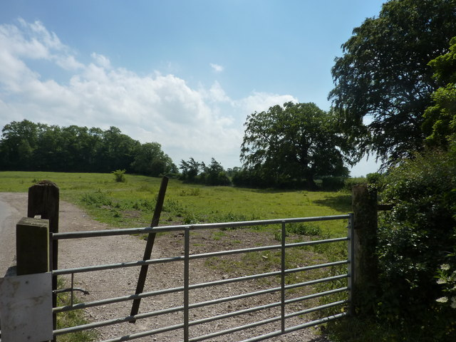 Gate on Darfield Lane, Tissington