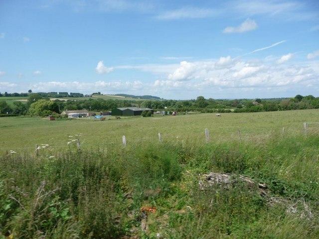 Pasture between the railway and Little Ireley