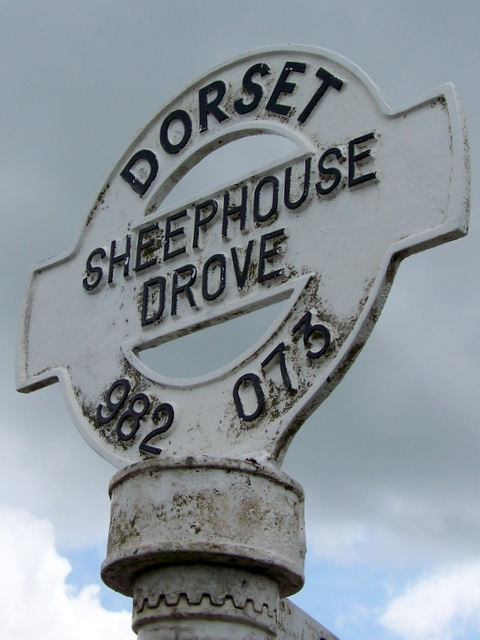 Sign detail, Sheephouse Drove