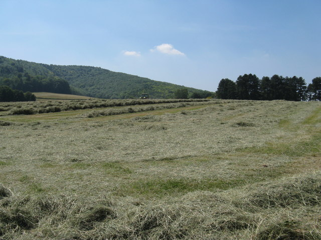 Haymaking at Woodcote Farm