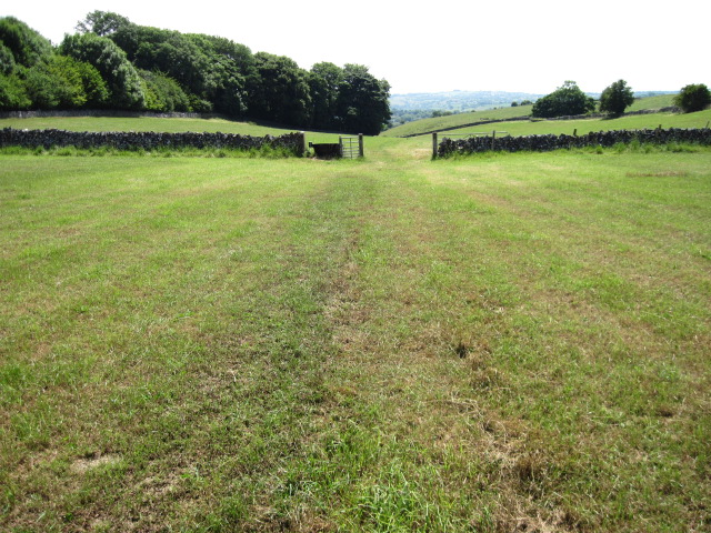 Footpath towards Eatondale Wood