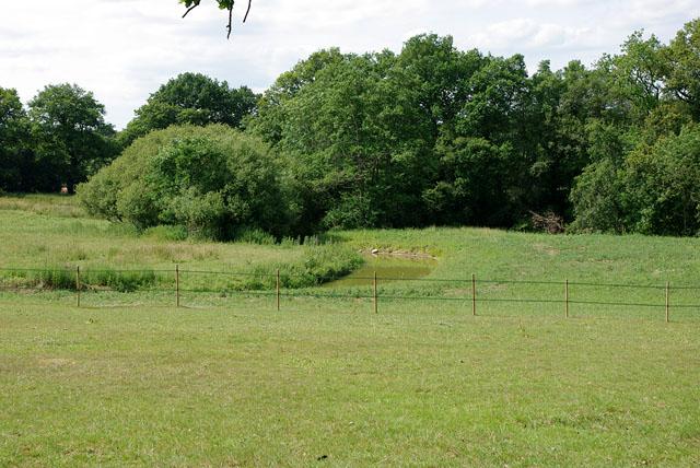 The Beam Brook