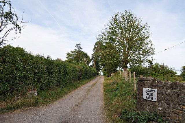 Driveway to Baddams Court Farm