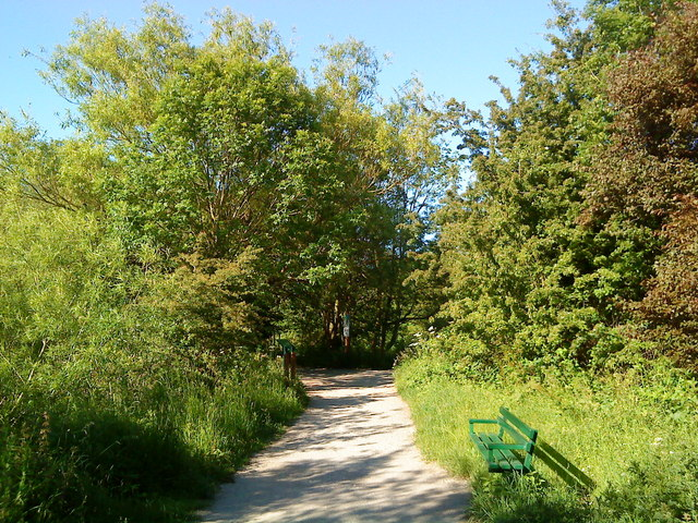 Footpath through the nature reserve