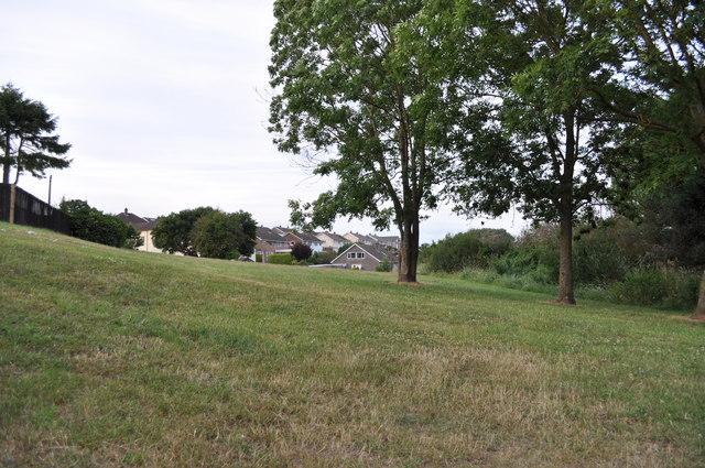 Green space in Sedbury