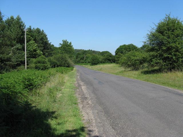Hoyle Lane north of Hoyle