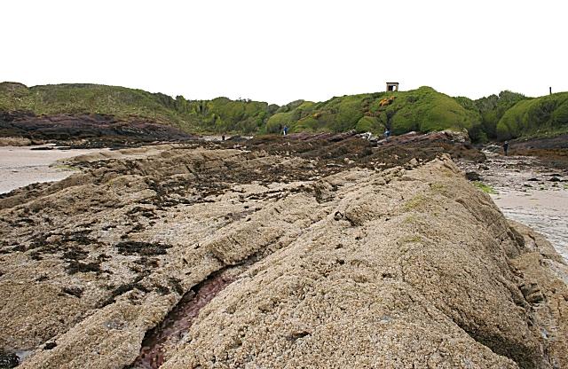 Devonian Red Sandstone Strata