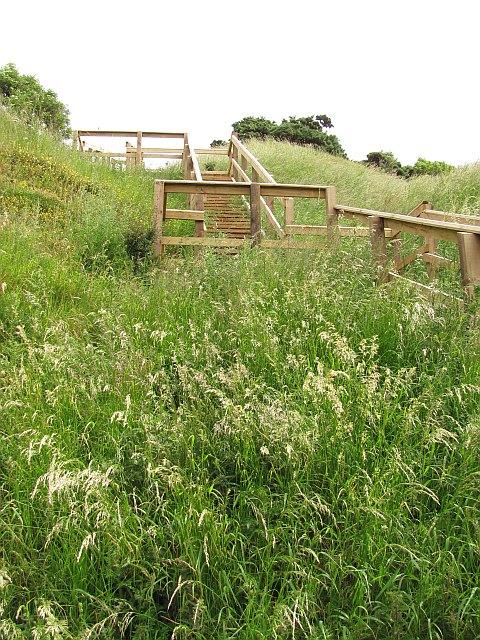 Steps, Pease Bay