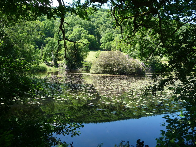 Canonteign Falls : Lily Lake