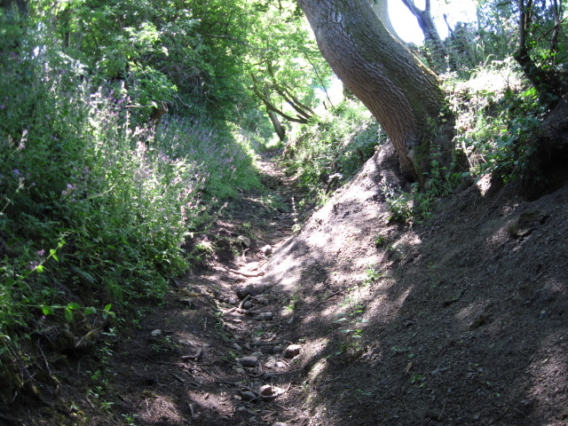 Sunken footpath near Flaxdale Holding