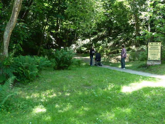 Canonteign Falls : Grass & Path