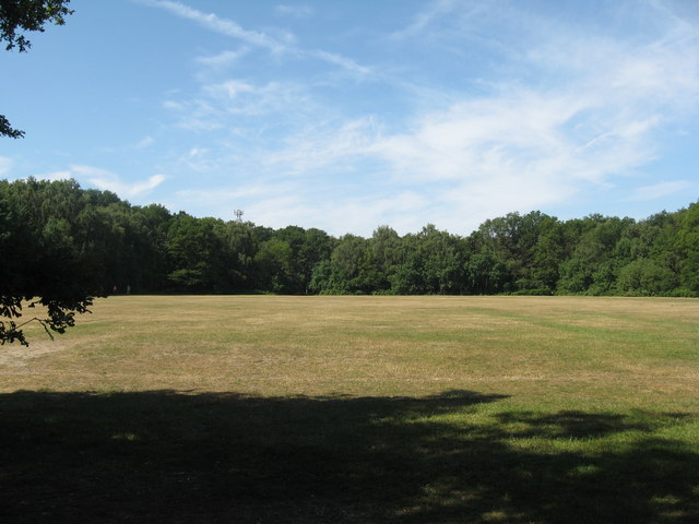 Open space on Pyrford Common