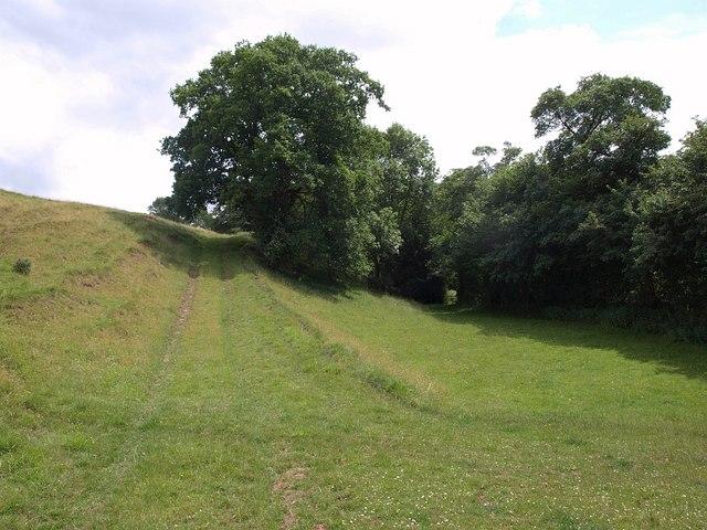 Track at Hagley Bridge