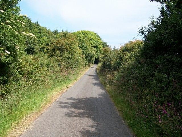 View north towards Coed Mynydd-Meilian woodland